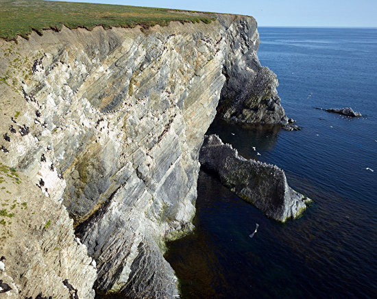 Novaya Zemlya's shale shoreline is sometimes covered with thin, newly formed layers of soil. 2016