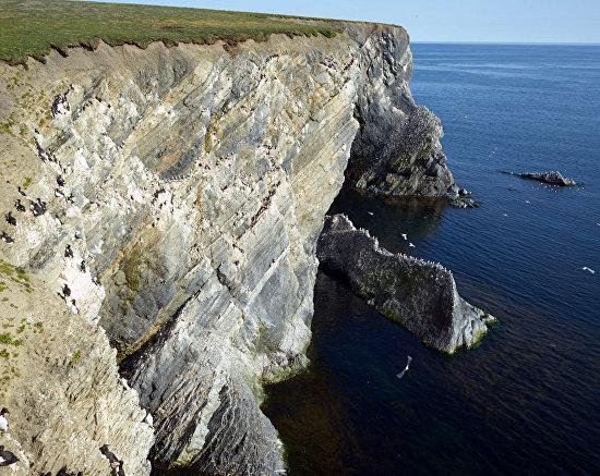 Берега Новой Земли сложены сланцами, иногда покрытыми тонким слоем только начавшей формирование почвы. 2016