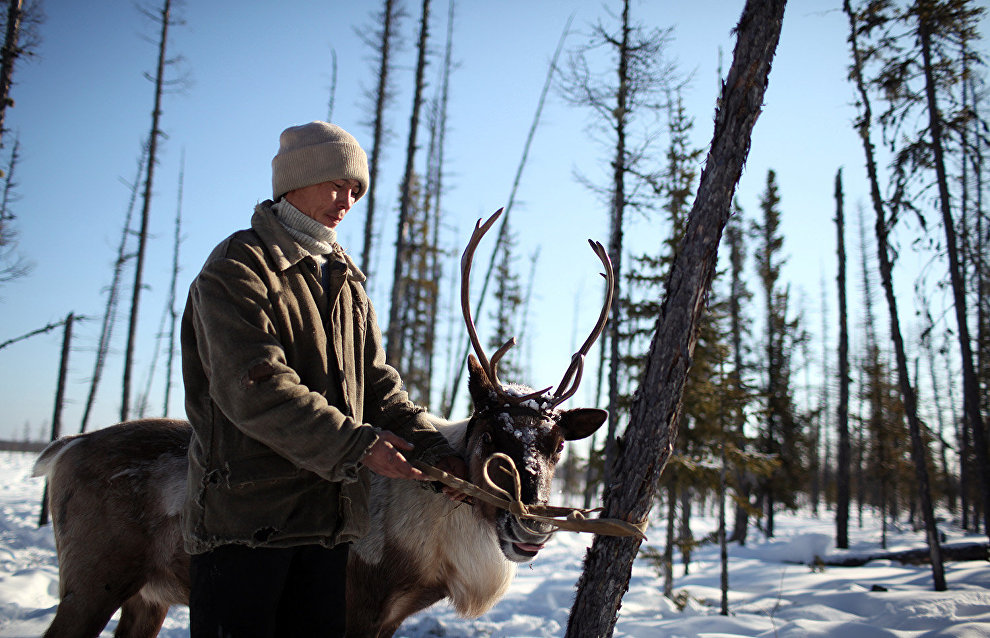 2020: Launching of Young Reindeer Breeder and Teacher of the Arctic programs
