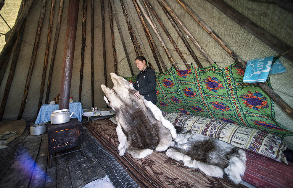 Grants allocated in Yamal to representatives of indigenous peoples of the North who keep traditional lifestyle