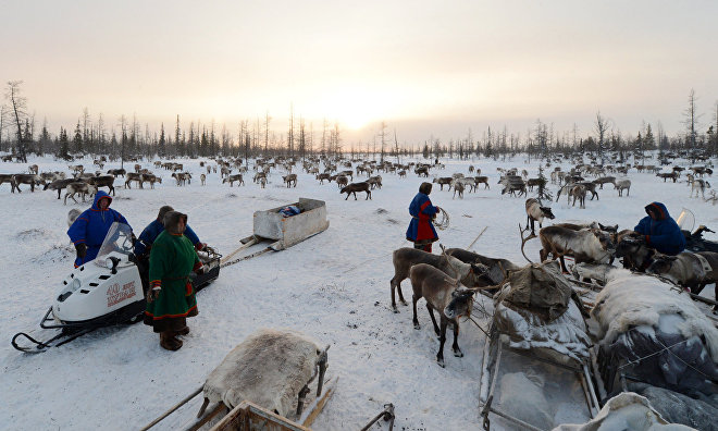 Yamal expedition explores nomad camps, trading posts, remote villages