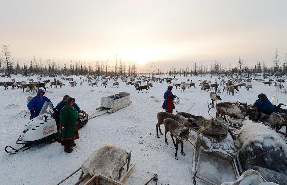 Жители Арктики станут «гражданскими исследователями» глобального потепления