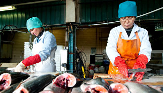 Governor Kovtun: Shore-based fish processing plants are working below capacity