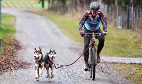 Олег Таразанов: Главное, чтобы собака понимала, что вы имеете в виду