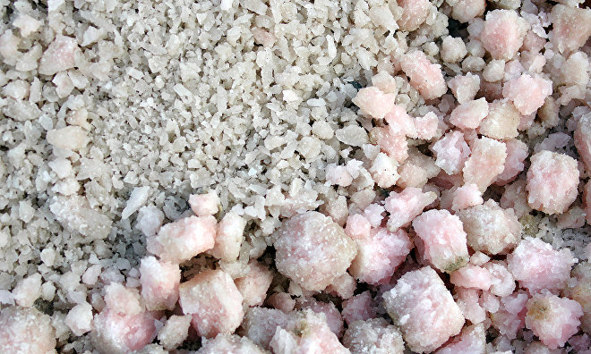 Yakutia hopes to build a salt processing plant for 100 million rubles