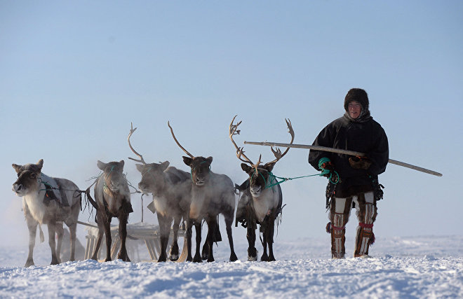 Scientists discuss involvement of indigenous Arctic peoples in research activities