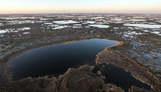 В Ненецком округе обсудили проект заказника «Вашуткинский»