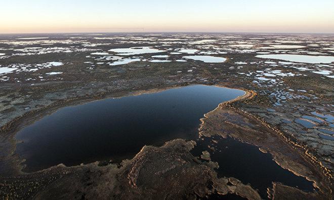 Creation of the Vashutkinsky Nature Sanctuary discussed in the Nenets Autonomous Area