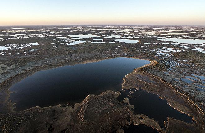 В малых озёрах Арктики обнаружено повышенное содержание загрязняющих веществ