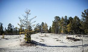 Arctic boundaries to include Komi, Karelia and Krasnoyarsk Territory