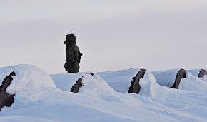 Военные экологи будут работать в Арктике с 1 июня по 1 октября