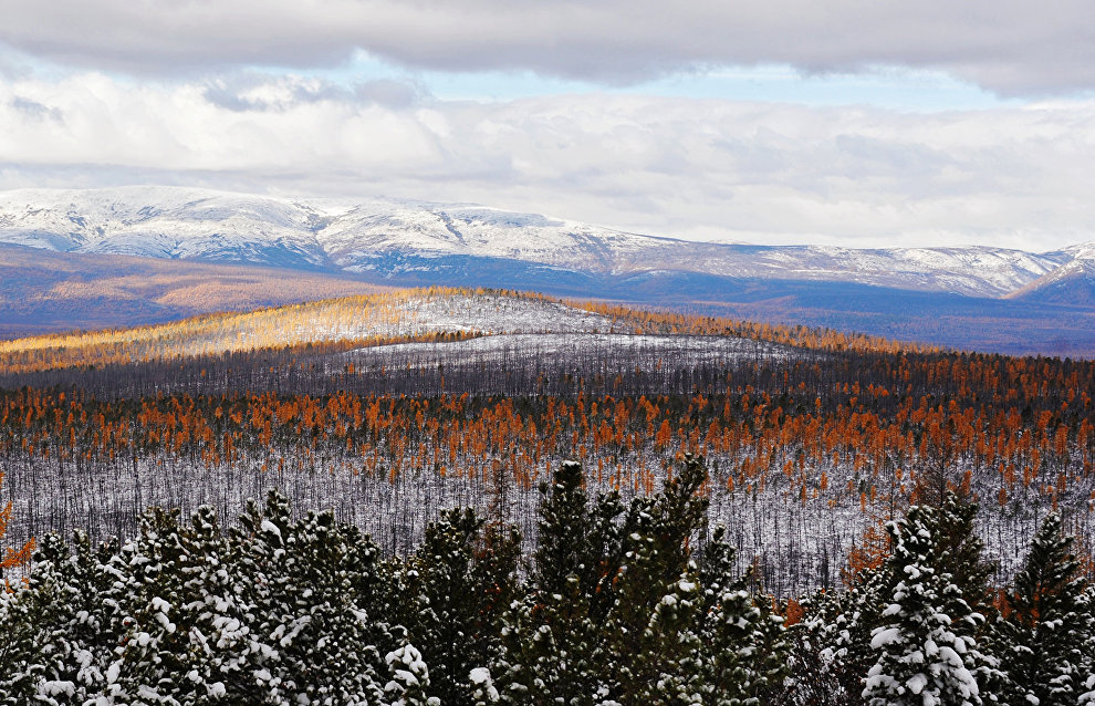 Yegor Borisov orders to develop a strategy for the comprehensive development of Yakutia's Arctic territories until 2030