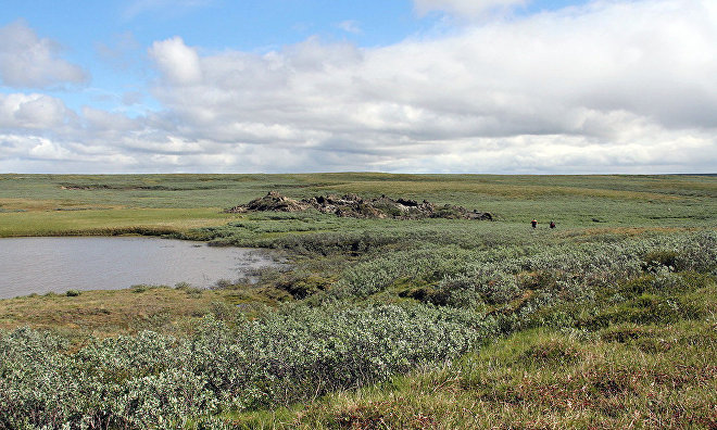 Investment in Yamal Arctic environmental clean-up estimated at 120 million roubles
