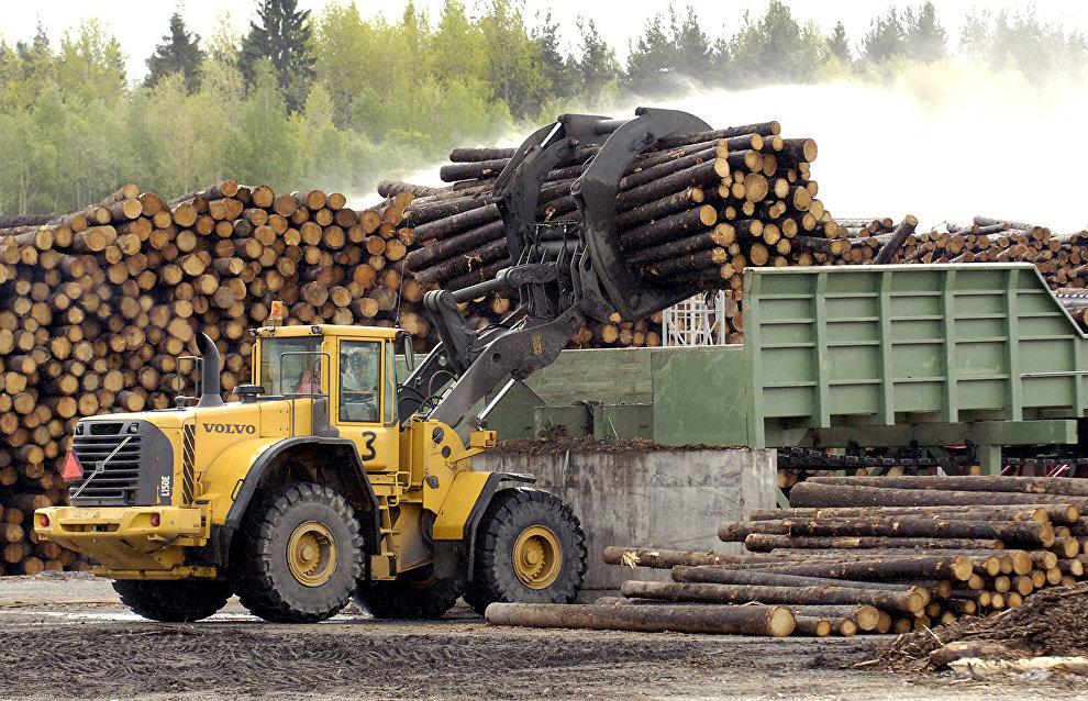 New timber mill to open in Arkhangelsk Region in 2019