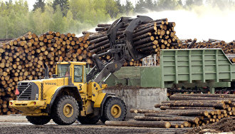 New timber mill to open in Arkhangelsk Region in 2019