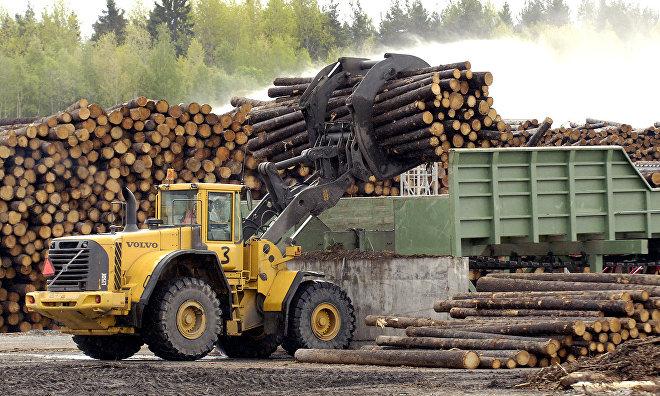 Новый лесопильный завод откроется в 2019 году в Архангельской области