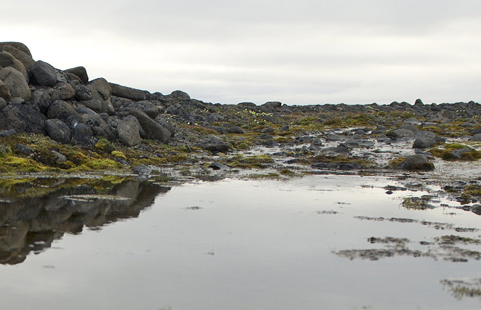 Scientists detect water pollution on Vilkitsky Island