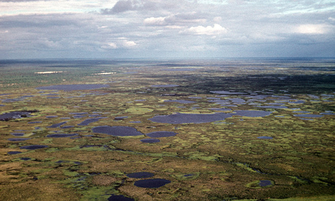 Students take 160 kg of soil samples to study effects of fires on Yamal tundra