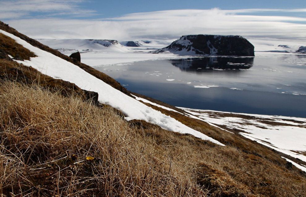 Scientists: Average annual temperature in the Arctic has gone up almost 3 degrees since 1970