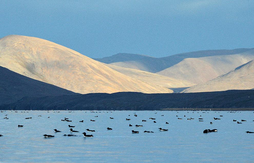 Senyavin Strait, Bering Sea, Chukotka Autonomous Area
