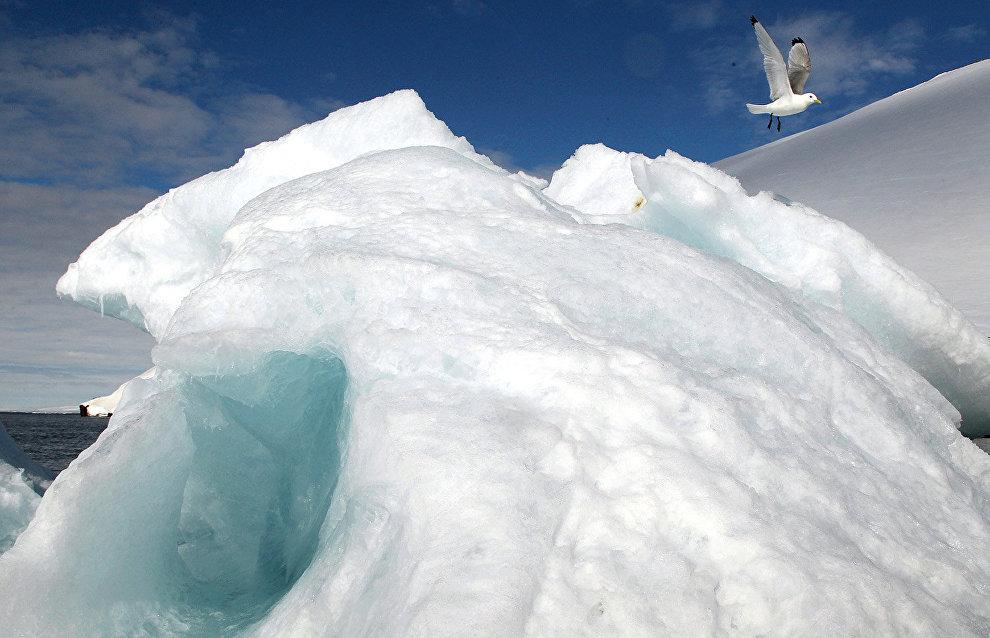 Rosneft tows heavy iceberg in the Arctic