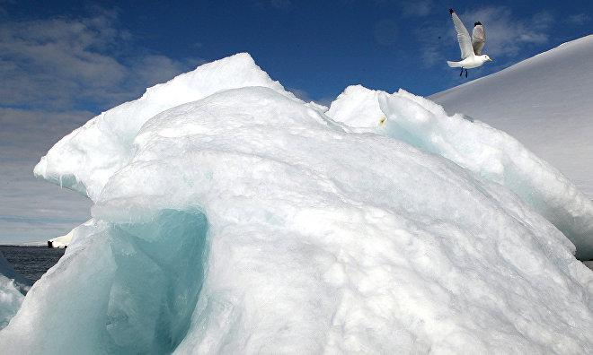 «Роснефть» отбуксировала в Арктике айсберг весом более 1 млн т