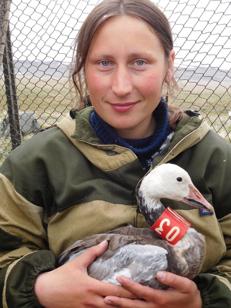 Ulyana Babiy, researcher at the Wrangel Island Nature Reserve