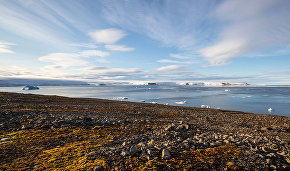 Free polar land: Russians will have an opportunity to receive a free land plot in the Arctic