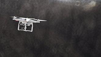 Туристам в Арктике запретили запускать дроны