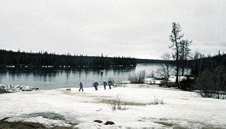Международные экспедиции начнут очистку острова Вилькицкого в Арктике в 2018 году