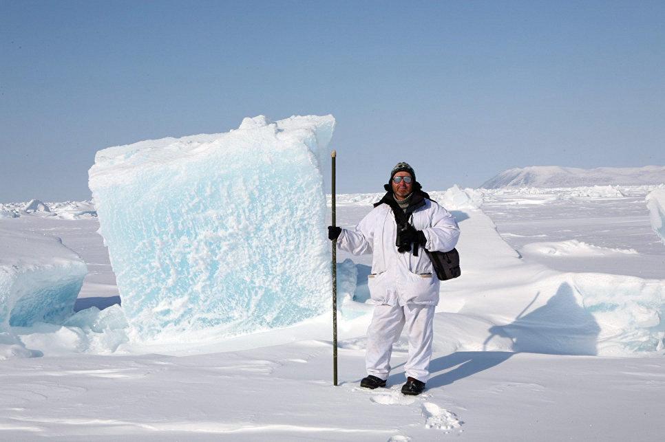 Наблюдения во льдах, остров Врангеля, 2009 год