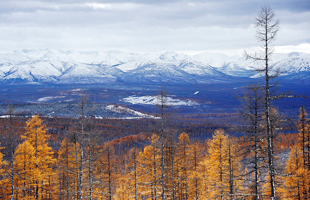 About 10 Krasnoyarsk Territory localities included in Russian Arctic zone