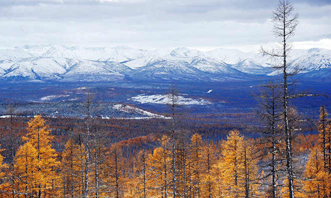 First priority development area in the Arctic to be created in Yakutia in 2018