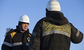 Rosneft boosts seismic reconnaissance surveys by over 40 percent
