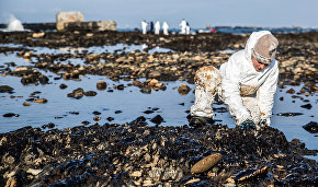 Russian scientists develop substance for removing Arctic oil spills