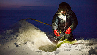 A fisherman with two assistants can catch up to five tons of fish, usually broad whitefish and peled