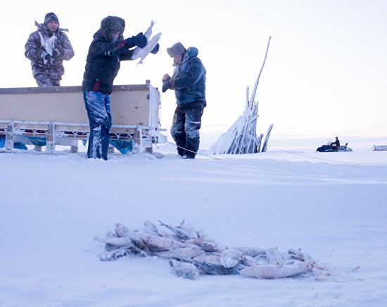 Зимняя рыбалка в Якутии в фотографиях Натальи Федоровой