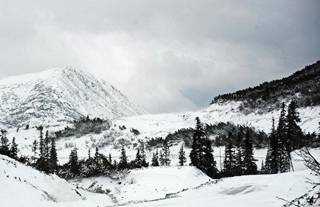Восемь районов Якутии дополнительно включат в арктическую зону