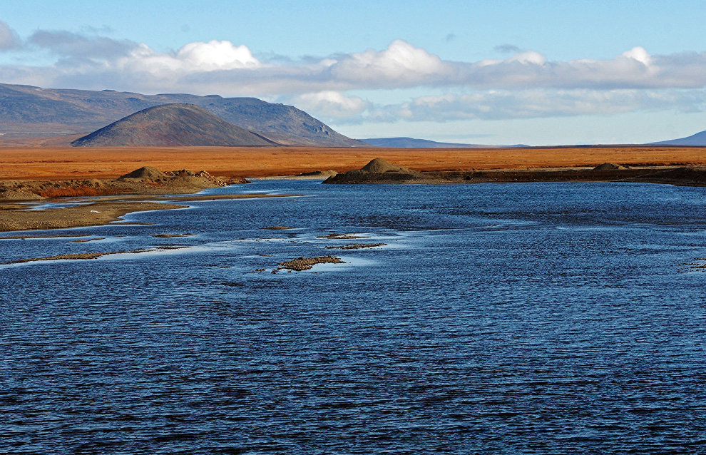 Russia and the United States to expand bioresource research in the Bering Sea and the Arctic