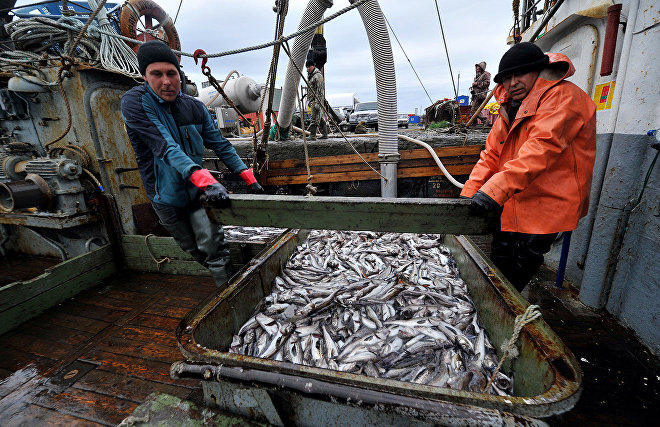 Russian Government approves the draft agreement on the prevention of unregulated high seas fishing in the Arctic