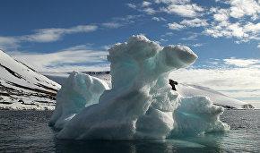 Учёные из 18 стран мира будут работать над созданием единой базы данных об Арктике
