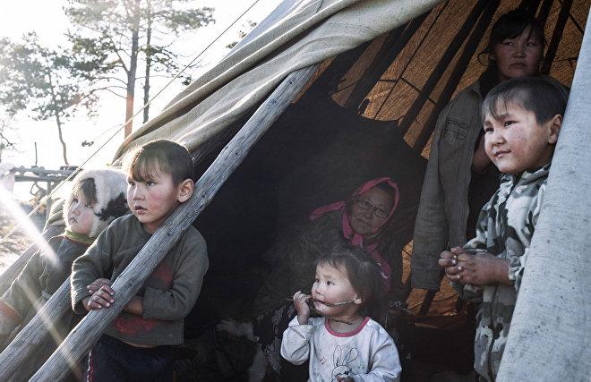 В Ямальском районе издадут сюдбабцы, ярабцы, хынабцы и лаханако