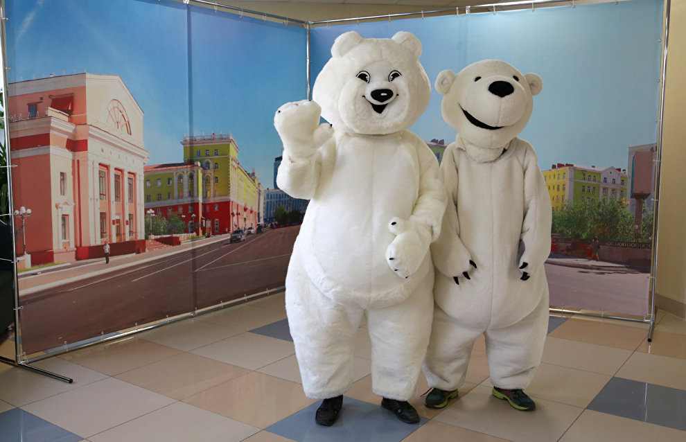 The Bely Mishka (Polar Bear) educational center was established in Norilsk with support of the Arctic Development Project Office. The center will teach first- and second-grade school students how important it is to preserve polar bears