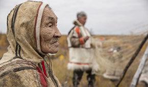 A Nganasan merited reindeer herder. Khatanga, Taimyr