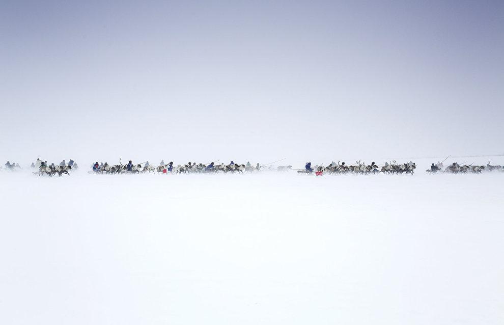 Старт гонки оленеводов в честь праздника начала зимы. Посёлок Тухард, Таймыр