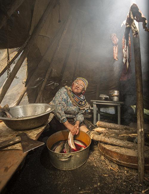 An Evenki woman processes fish for later drying. Lake Khantaiskoye, Putorana Plateau