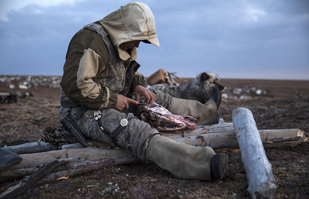 A Dolgan reindeer herder, Oleg Uksusnikov, prepares dinner. The valley of the Popigai River, Taimyr