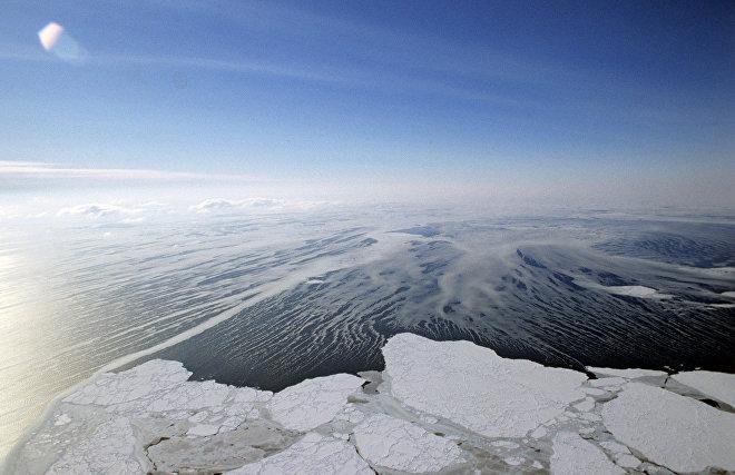 Пограничники России и США провели патрулирование в Беринговом море