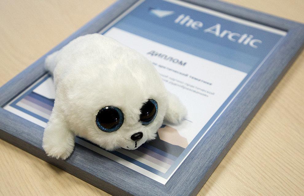 Arctic.ru наградила молодых учёных-геологов, изучающих Арктику