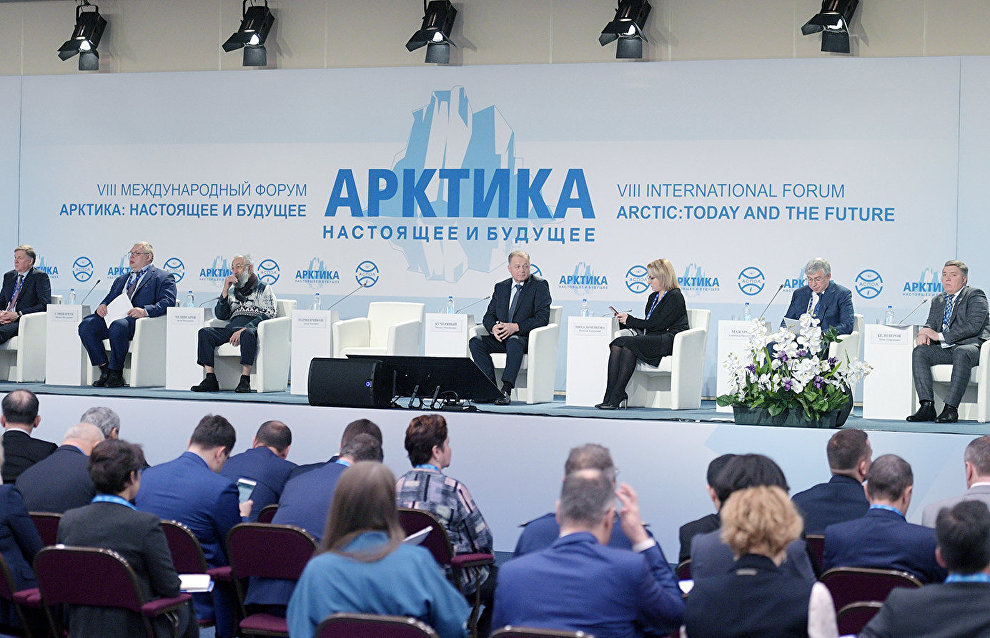 St. Petersburg authorities propose creating a state development program for the Arctic and Antarctica